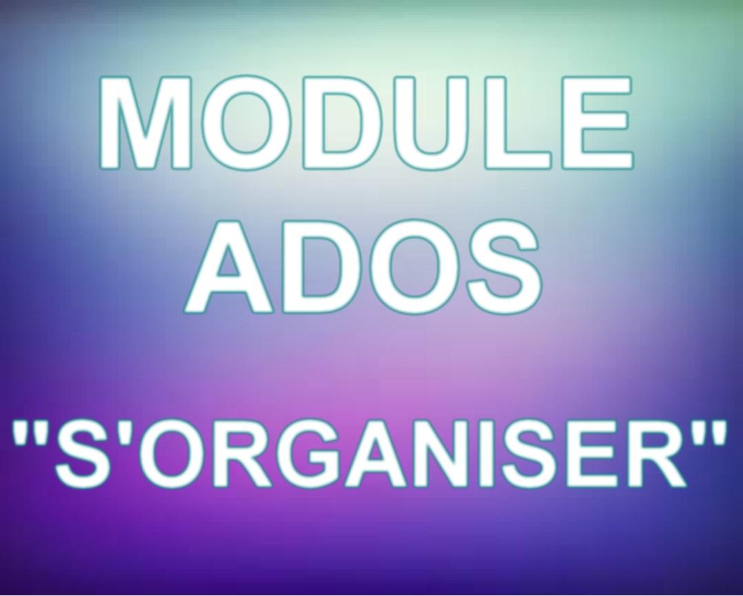 module ado orga